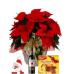 Poinsettia Wine & Panettone